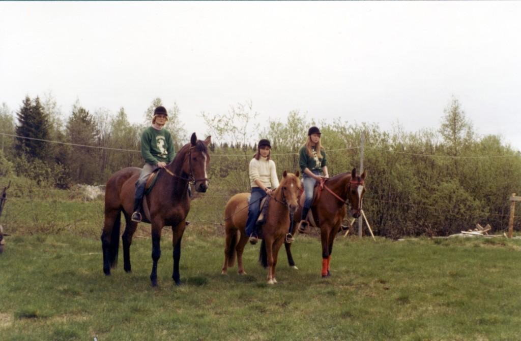 Delar av Långvattnets Ridklubb våren 77