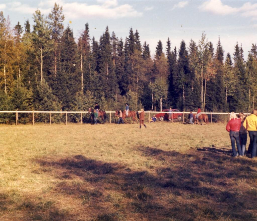 De första ridlektionerna i Nordmalings Ridklubb hösten 1977